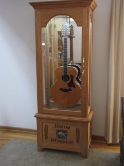Bon Guitar Display Cases By Ozark Valley Displays